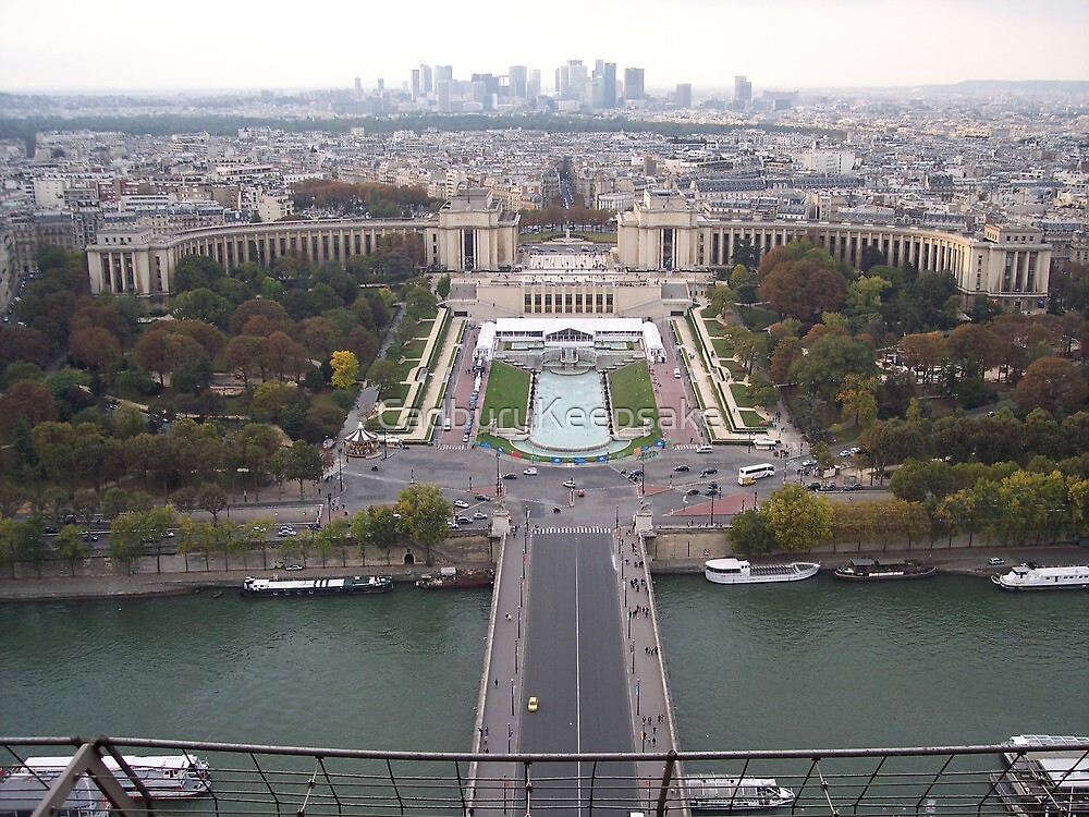 View from the Eiffel Tower by CadburyKeepsake