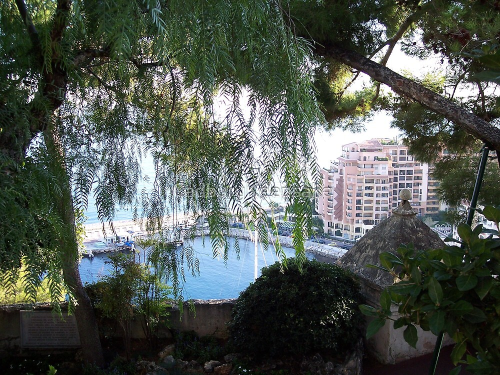 View of Monaco Through the Brush by CadburyKeepsake