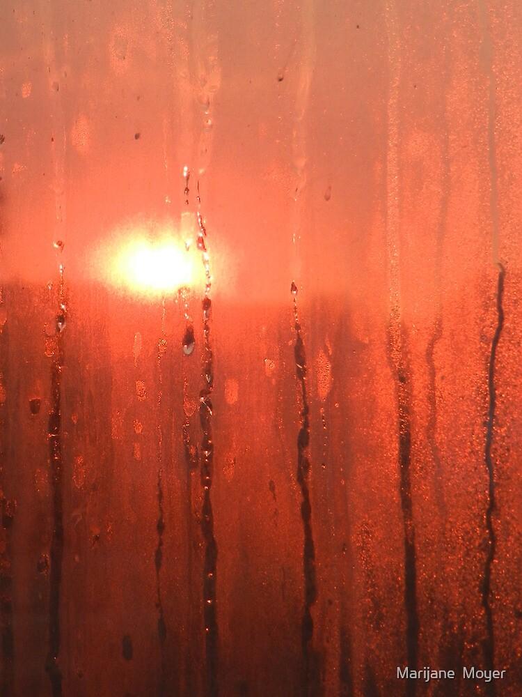 Fire In The Sky by Marijane  Moyer