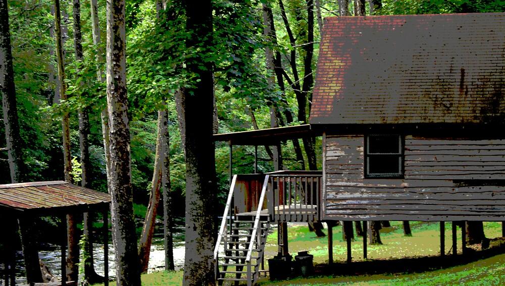 Blue Ridge Mountain Stream and Cabin by Stephen Upton, Sarasota, Fl