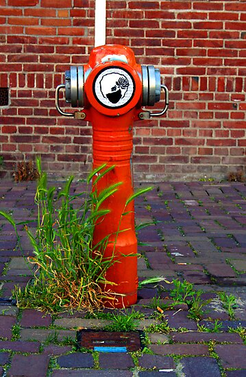 Veer Ndsm Werf AMSTERDAM NETHERLANDS MAY 2008 by photographized