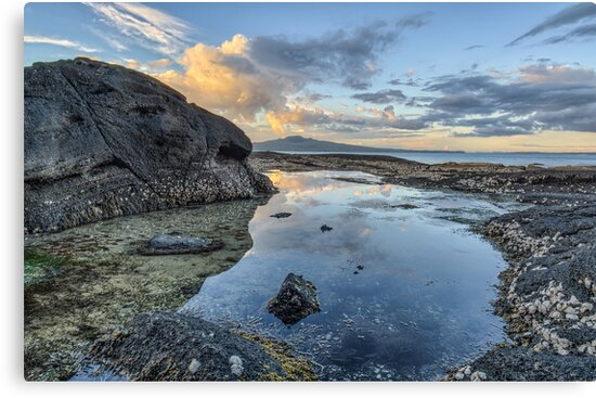 Rock Pool, Cheltenham, Devonport, New Zealand by Ian Rushton