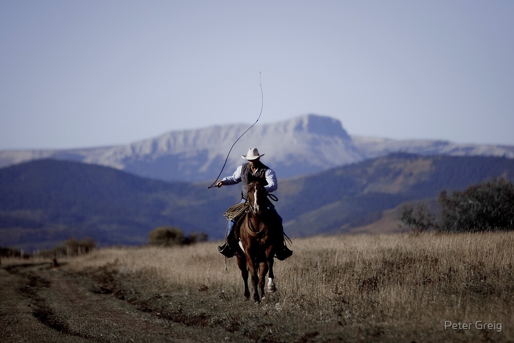 Canadian Cowboy by Peter Greig