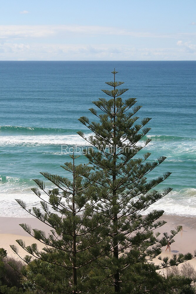 """Day 188   365 Day Creative Project  """"Burleigh Beach"""" by Robyn Williams"""