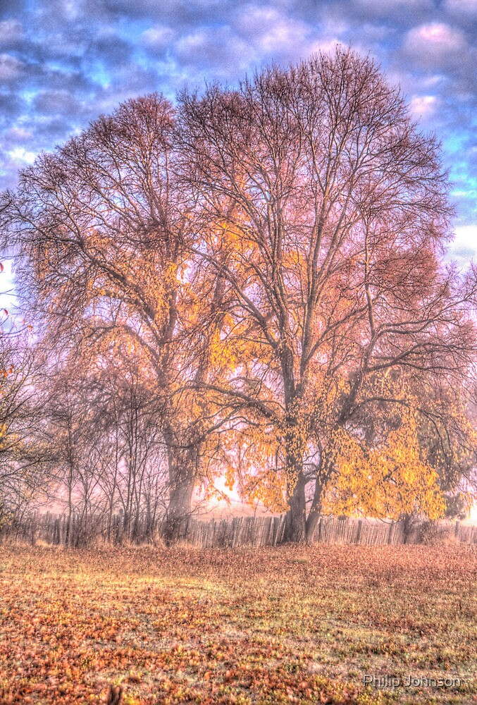 Colours - Hill End NSW Australia - The HDR Experience by Philip Johnson