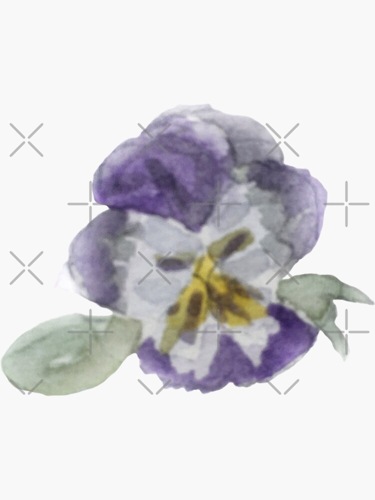 Purple Pansy Illustration in Watercolor by WitchofWhimsy