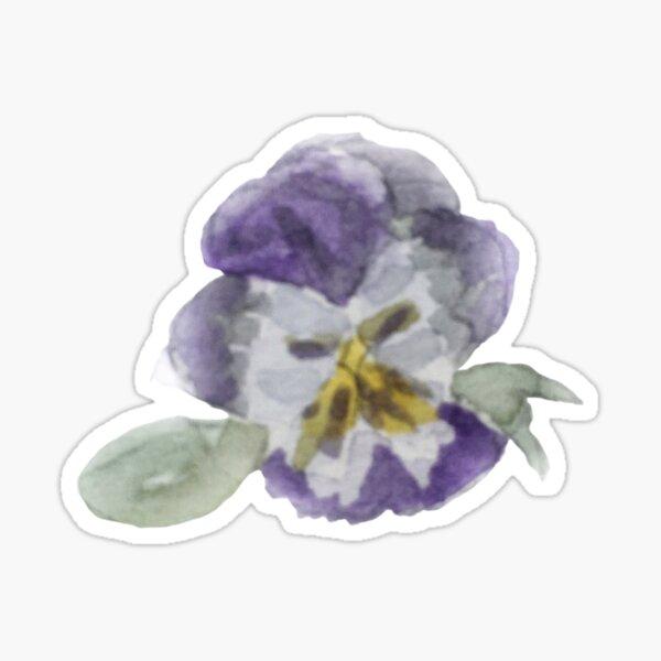 Purple Pansy Illustration in Watercolor Sticker