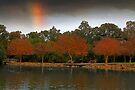 Pioneer Park - Western Australia  by EOS20