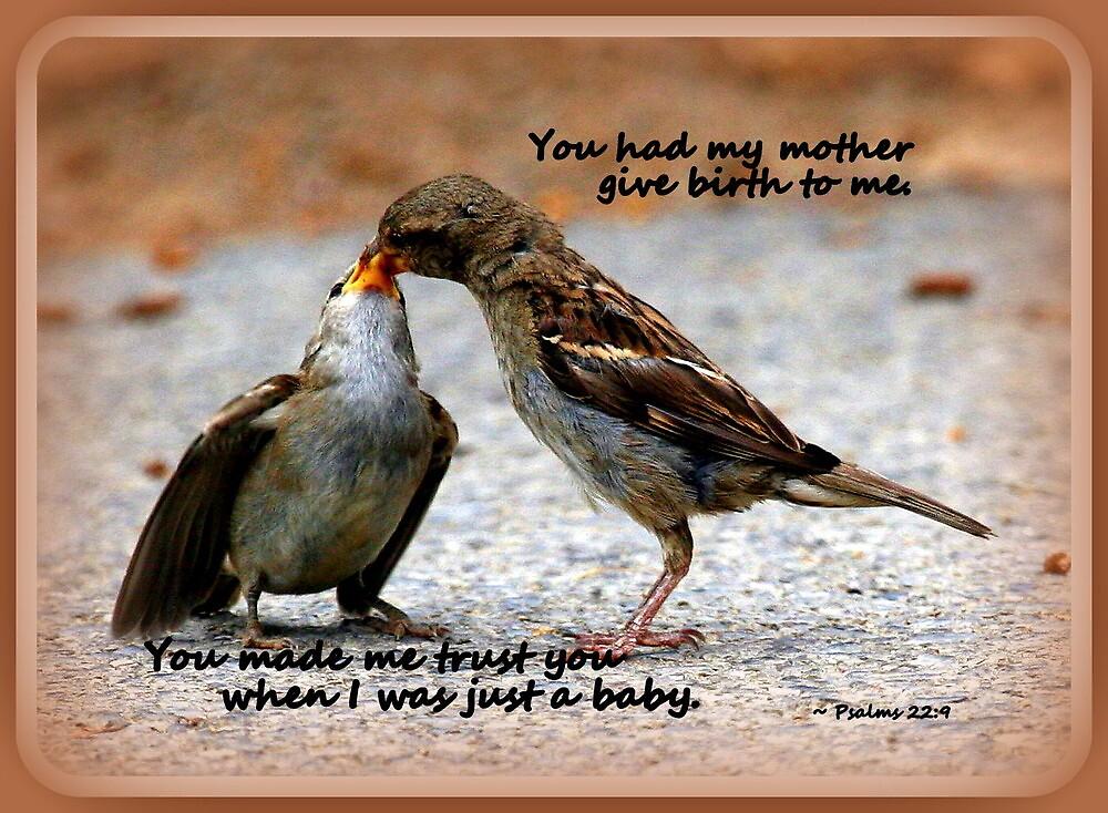As a Mother Loves Her Children by Paula Tohline  Calhoun