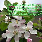 Jesus Christ, The Apple Tree by Paula Tohline  Calhoun