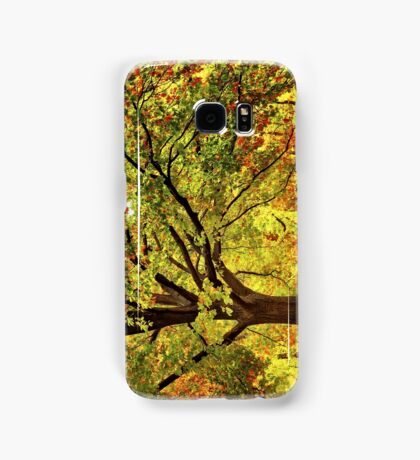 Golden Oak Tree  Samsung Galaxy Case/Skin