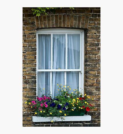 Cottage Window, Sandwich, Kent Photographic Print
