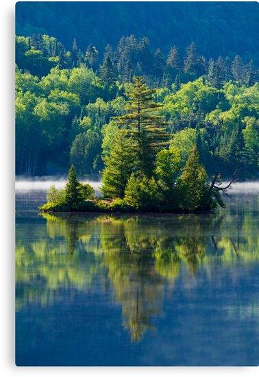 Canadian Summer Morning by MIRCEA COSTINA