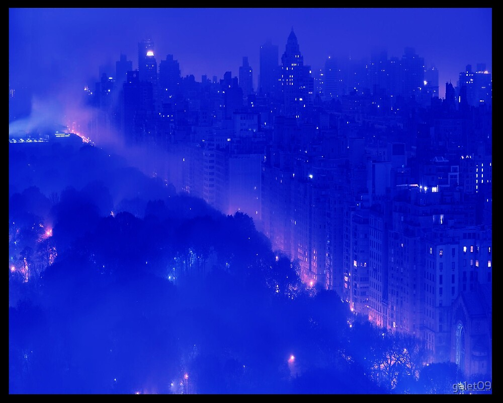 C.E. N.Y. Central Park at Night Art by galet09