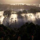 Summer Mist... by debsphotos