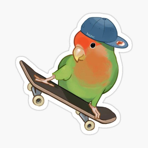 Skater Birb Sticker
