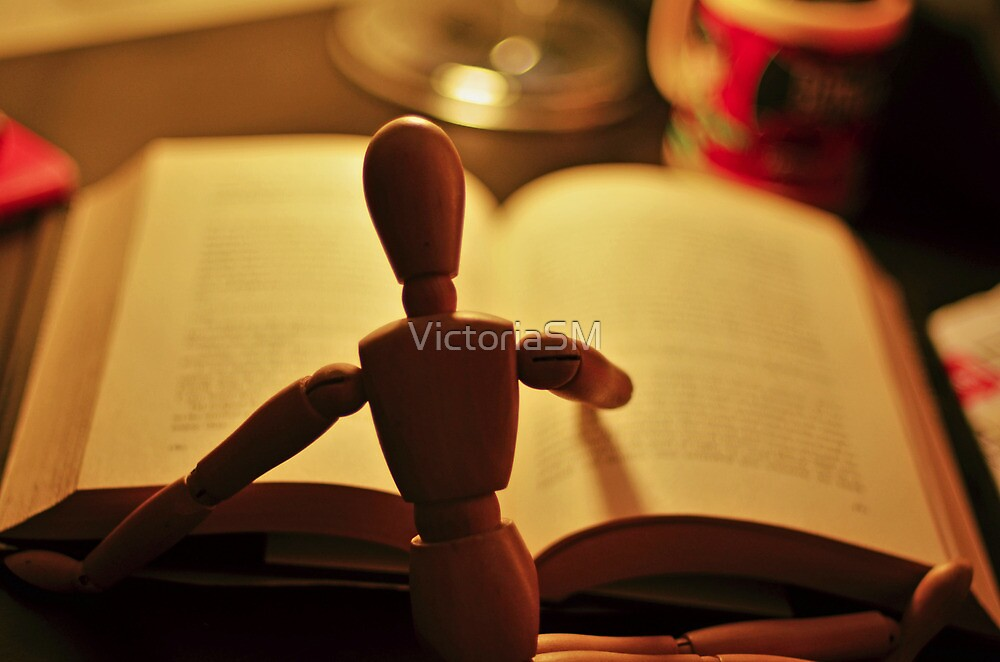 Little Reader by VictoriaSM