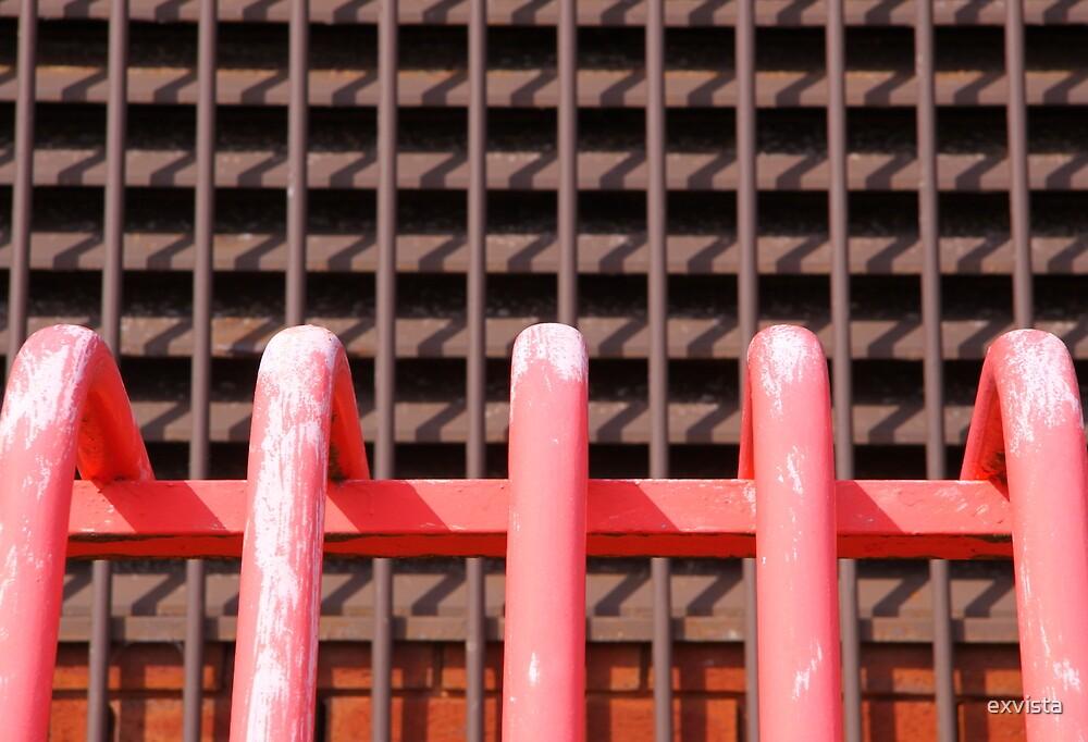 Pink Railings by exvista