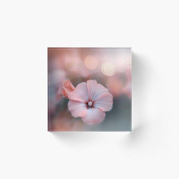 Rosa Blume Acrylblock