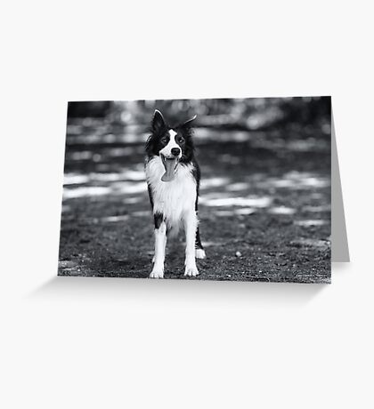 In black & white Greeting Card