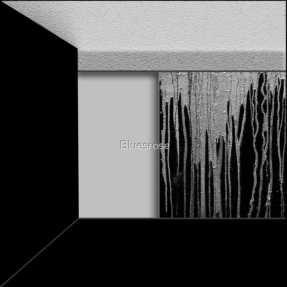 Walls by Bluesrose