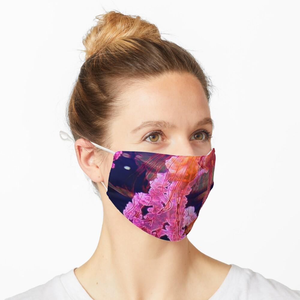 BOX JELLYFISH Mask