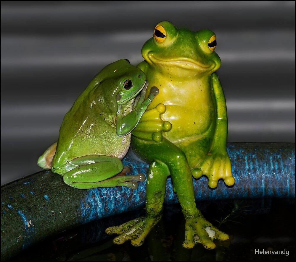 Love my new friend!! by Helenvandy