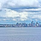 Seattle Skyline by David Davies