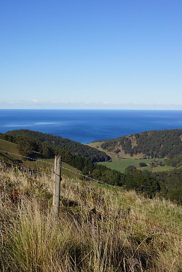 Apollo Bay from a Distance 2 by Lauren Eagle