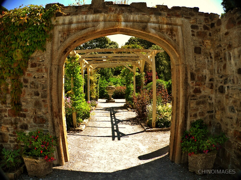 Mount Edgcumbe Formal Gardens Fisheye by CHINOIMAGES
