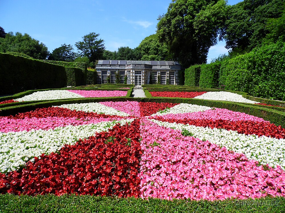 Mount Edgcumbe Flower Display Formal Gardens  - French Garden by CHINOIMAGES
