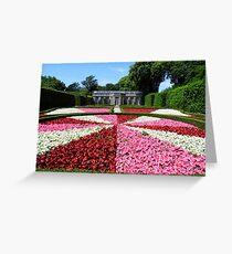Mount Edgcumbe Flower Display Formal Gardens  - French Garden Greeting Card