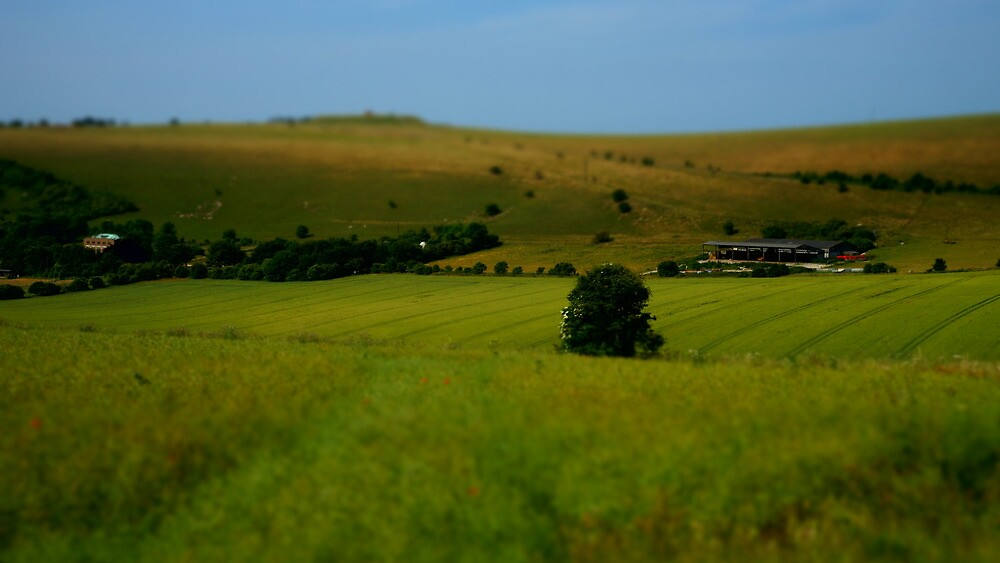 A smallholding. by glynk