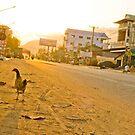 Wandering Chicken on a Dusty Road by MichaelDarn