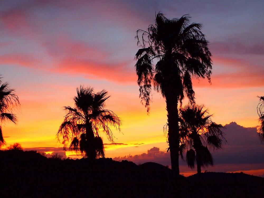 Sunset by Jenna Boettger Boring