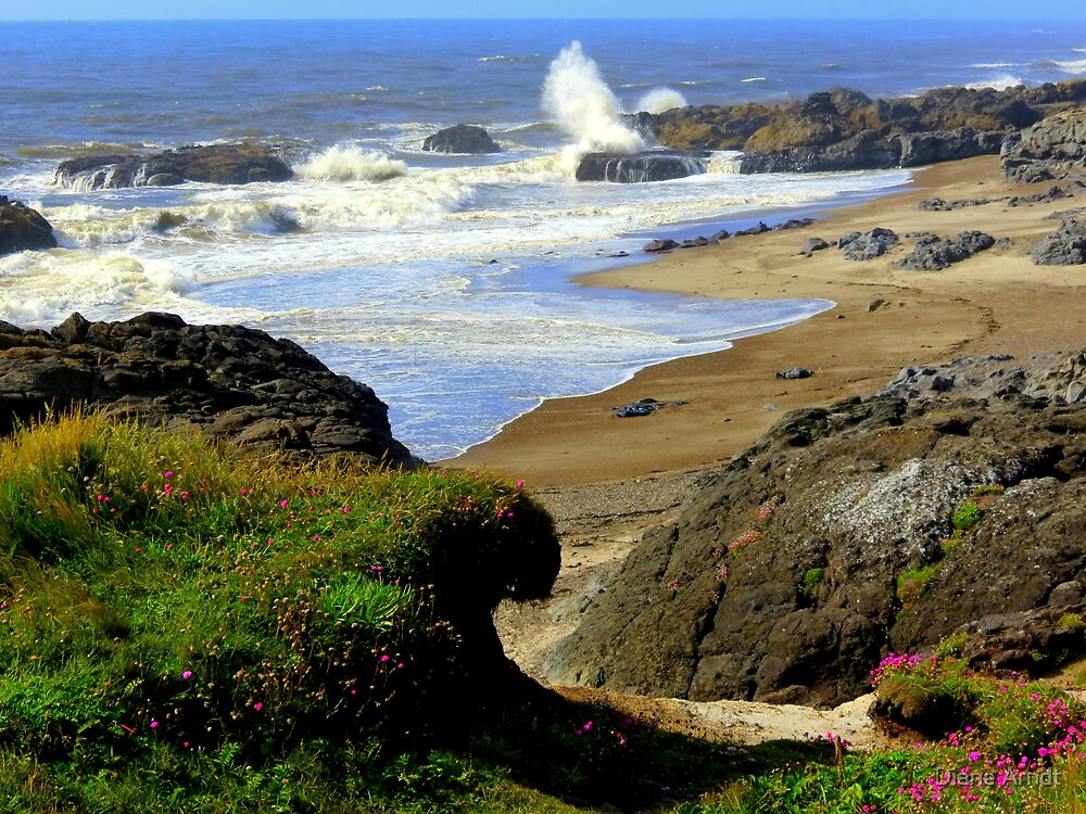 Smelt Sands...Yachats, Oregon...Pacific Ocean by Diane Arndt