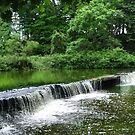 Rock Creek, Ohio by Sheri Nye