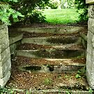 Stairway leading to Footville Cemetery by Sheri Nye