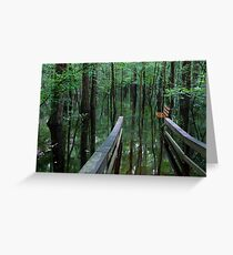 A Path to Mirrors Greeting Card