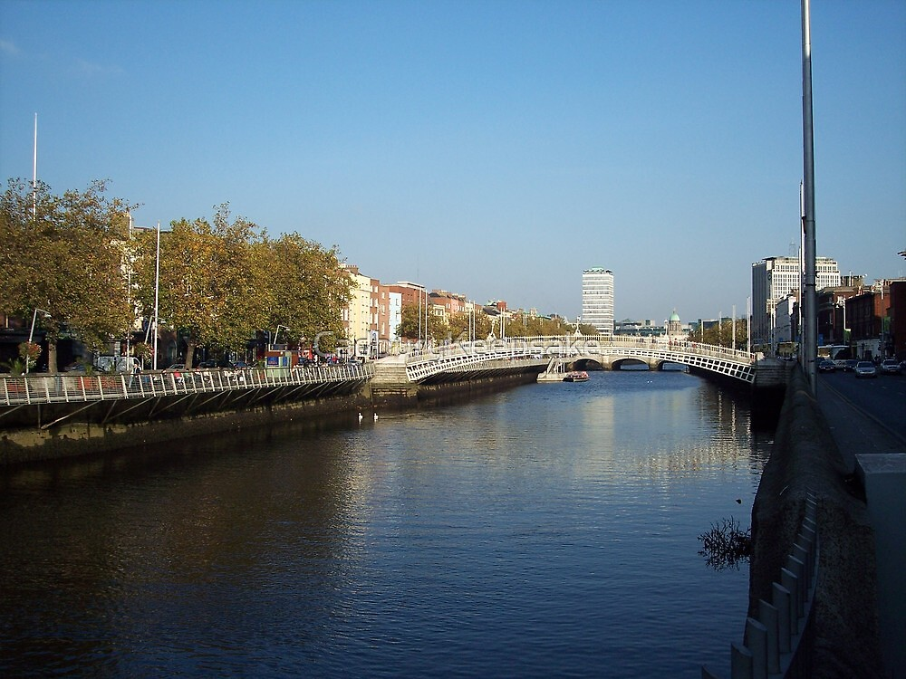 View from Half-Penny Bridge in Dublin by CadburyKeepsake