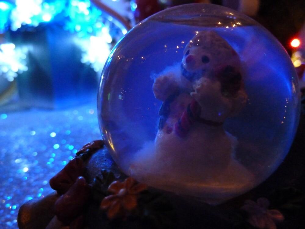 Seasonal Joy by davemcdaid
