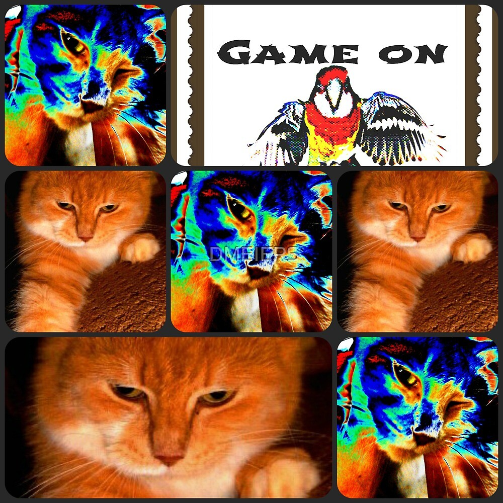 game on by DMEIERS