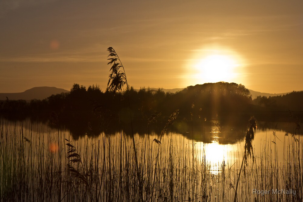 Lakeside Sunset by Roger McNally