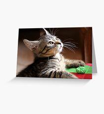 Playful Greeting Card