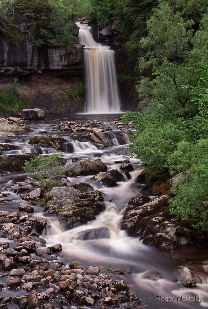 Thorton Force by Roger McNally