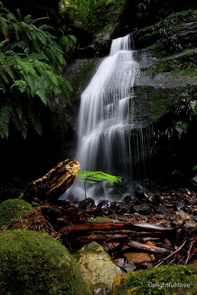 Mt Wilson Waterfalls by Delightfuldave