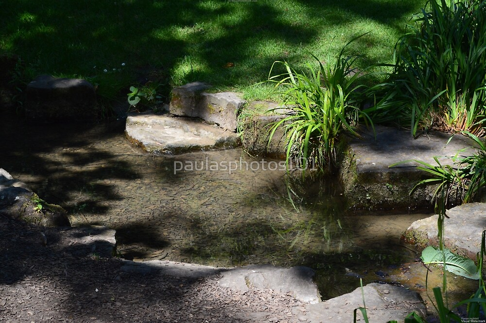 A LOVELY MINI BABBLING BROOK by paulasphotos101
