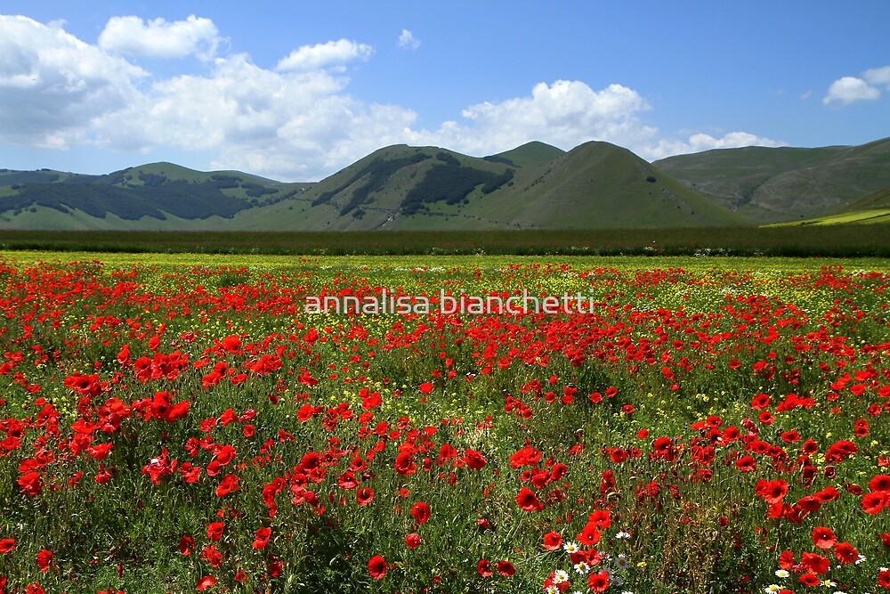 Red Sea through the mountains by annalisa bianchetti