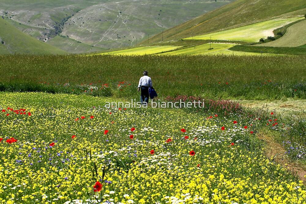 Walking among the flowers by annalisa bianchetti