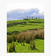 200% New Zealand Photographic Print